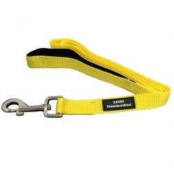 Modern Style Lead - pawsandtails.pet
