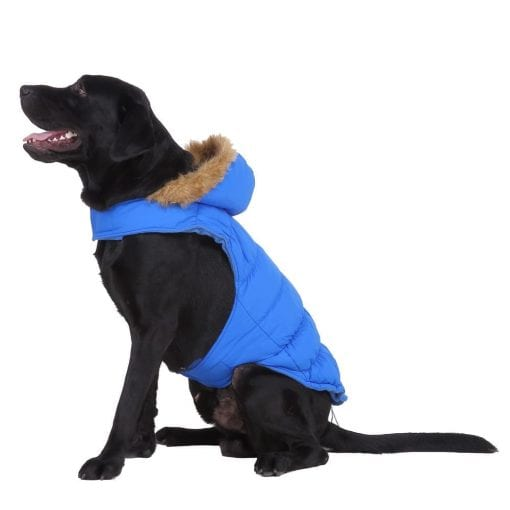 Blue Coat With Hood - pawsandtails.pet