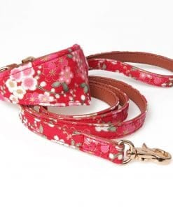 Dog Collar With Bow - pawsandtails.pet